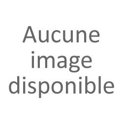 Acheter le Pc Portable ACER Aspire 3 i3 7è Gén 12Go 1To Rouge (N